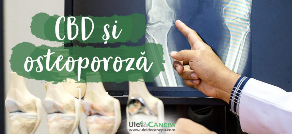 CBD si osteoporoza